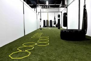 Skill room – Evolve All, martial arts training
